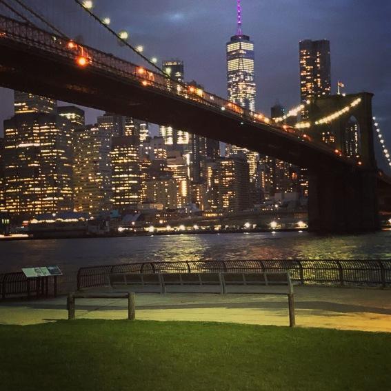 vista di Manhattan - night