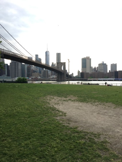 vista di Manhattan da Dumbo - day